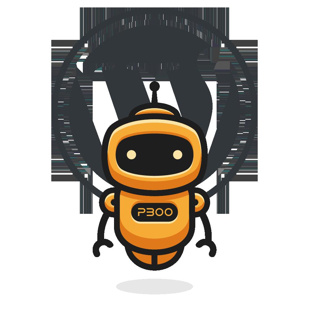 pboo's WordPress Vorteile